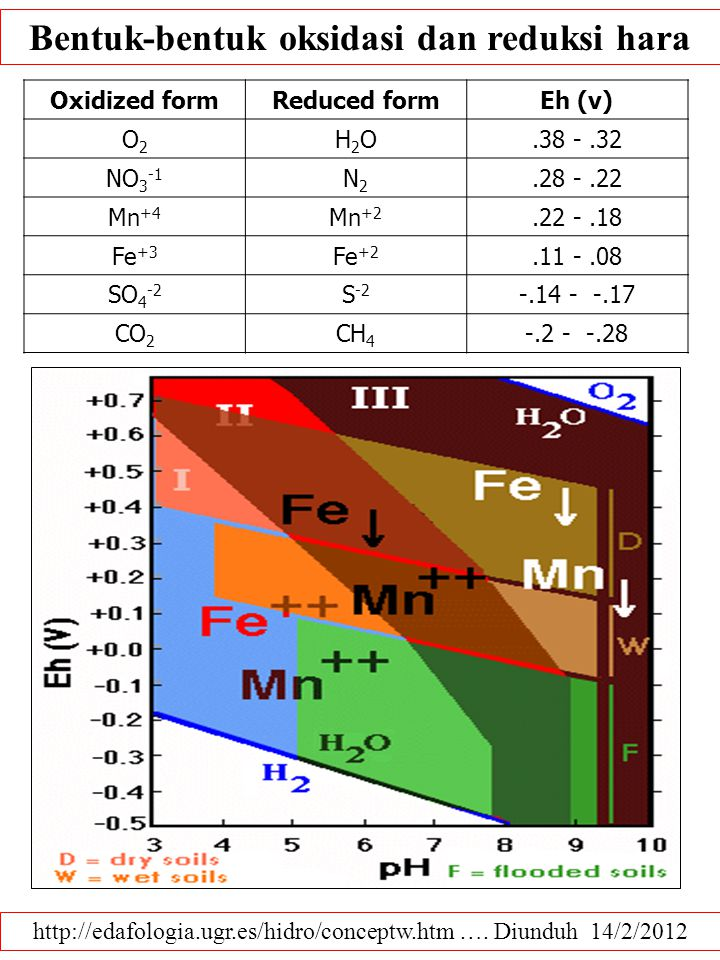 http://www.soils.wisc.edu/courses/SS325/oxides.htm …. Diunduh 14/2/2012 To determine E h Insert electrode in soil solution: –free dissolved oxygen pre