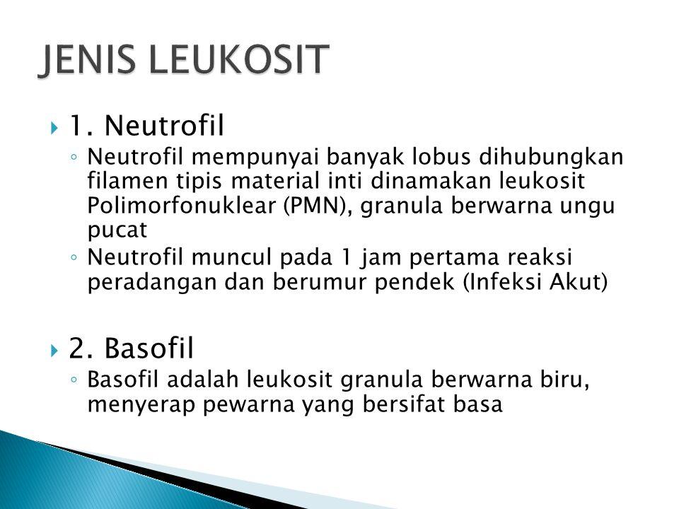  1. Neutrofil ◦ Neutrofil mempunyai banyak lobus dihubungkan filamen tipis material inti dinamakan leukosit Polimorfonuklear (PMN), granula berwarna