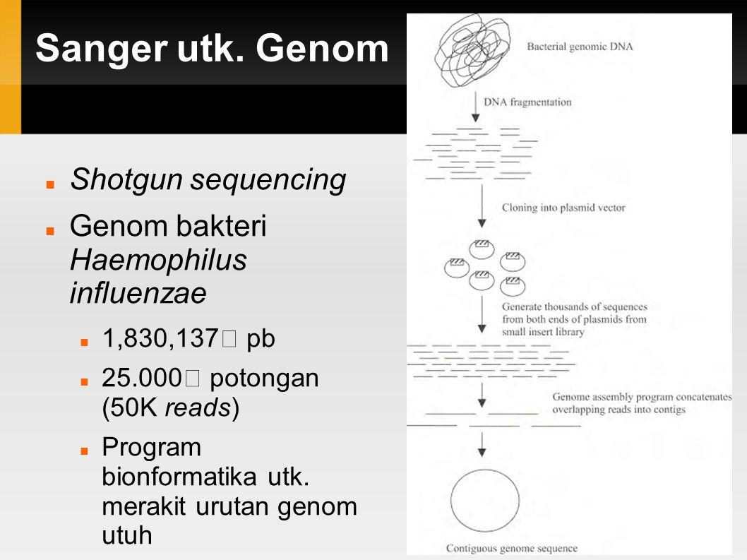 Shotgun Sequencing Genom Bacaan acak Perakitan Rangka Urutan Genom Berjenjang Seluruh Genom