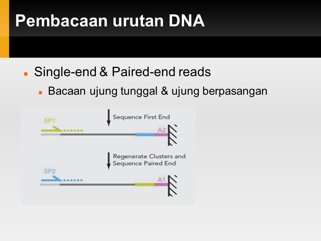 Pembacaan urutan DNA Single-end & Paired-end reads Bacaan ujung tunggal & ujung berpasangan