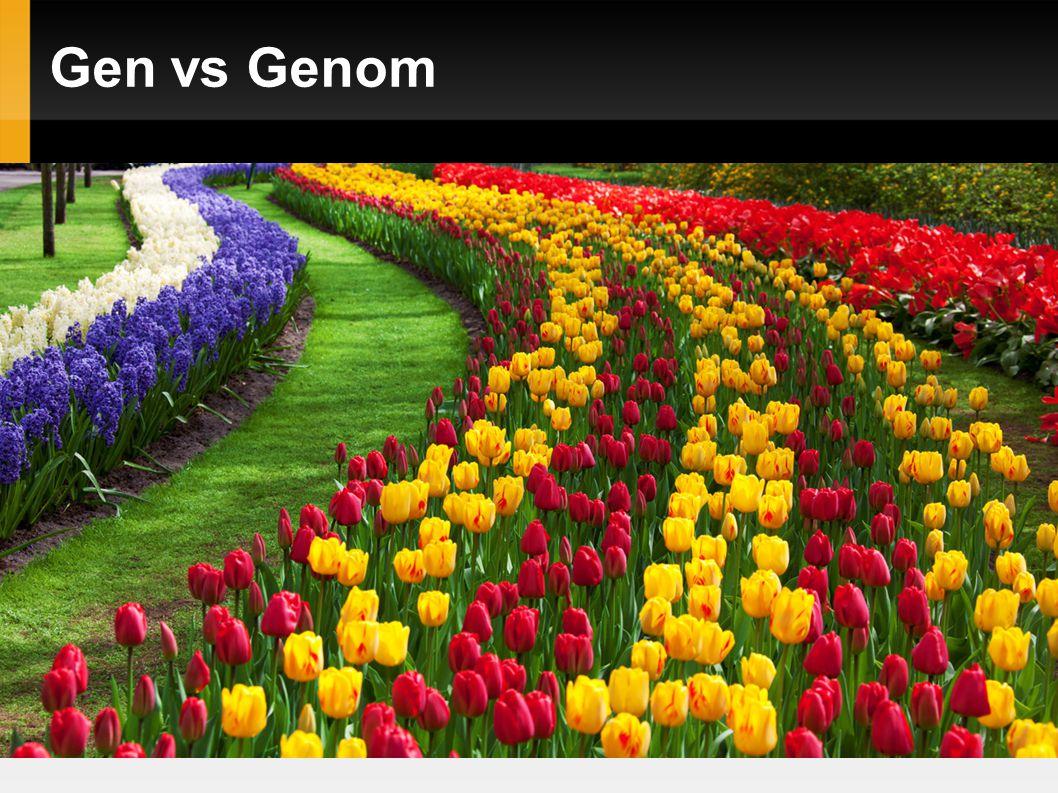 Gen vs.