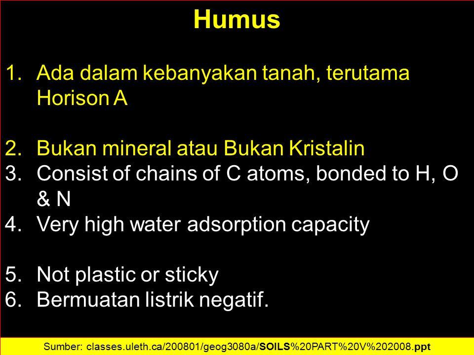 Humus 1.Ada dalam kebanyakan tanah, terutama Horison A 2.Bukan mineral atau Bukan Kristalin 3.Consist of chains of C atoms, bonded to H, O & N 4.Very