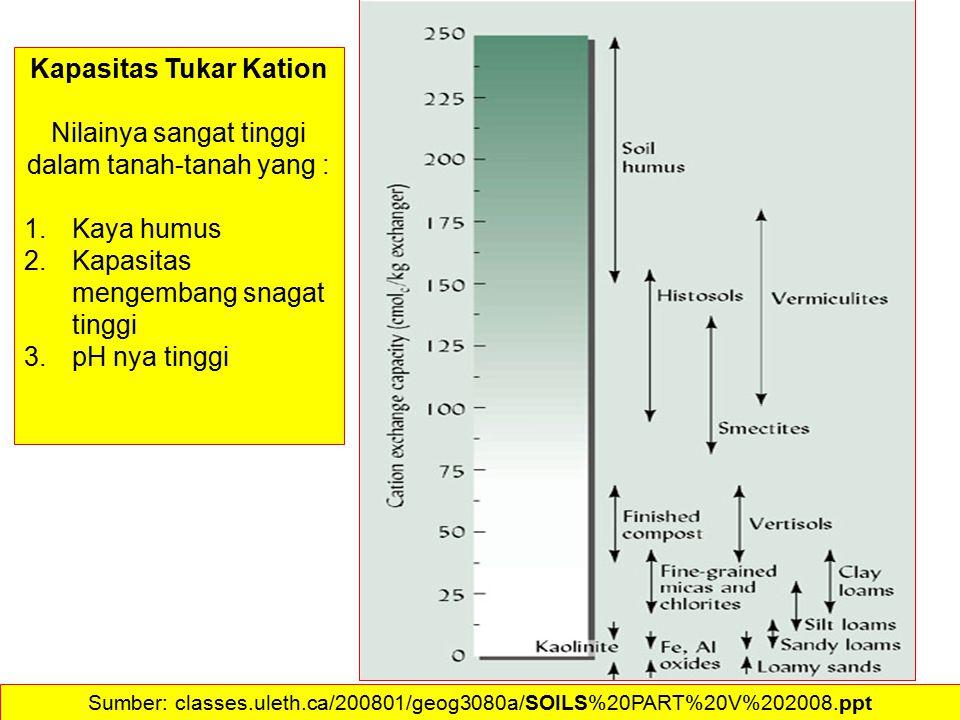 Kapasitas Tukar Kation Nilainya sangat tinggi dalam tanah-tanah yang : 1.Kaya humus 2.Kapasitas mengembang snagat tinggi 3.pH nya tinggi Sumber: class