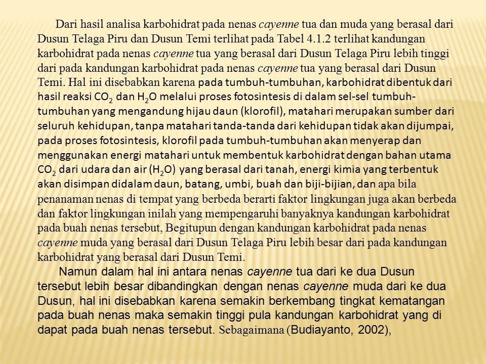 Dari hasil analisa karbohidrat pada nenas cayenne tua dan muda yang berasal dari Dusun Telaga Piru dan Dusun Temi terlihat pada Tabel 4.1.2 terlihat k