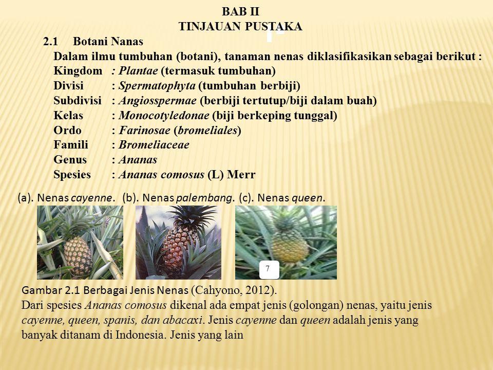 7 BAB II TINJAUAN PUSTAKA 2.1Botani Nanas Dalam ilmu tumbuhan (botani), tanaman nenas diklasifikasikan sebagai berikut : Kingdom: Plantae (termasuk tu