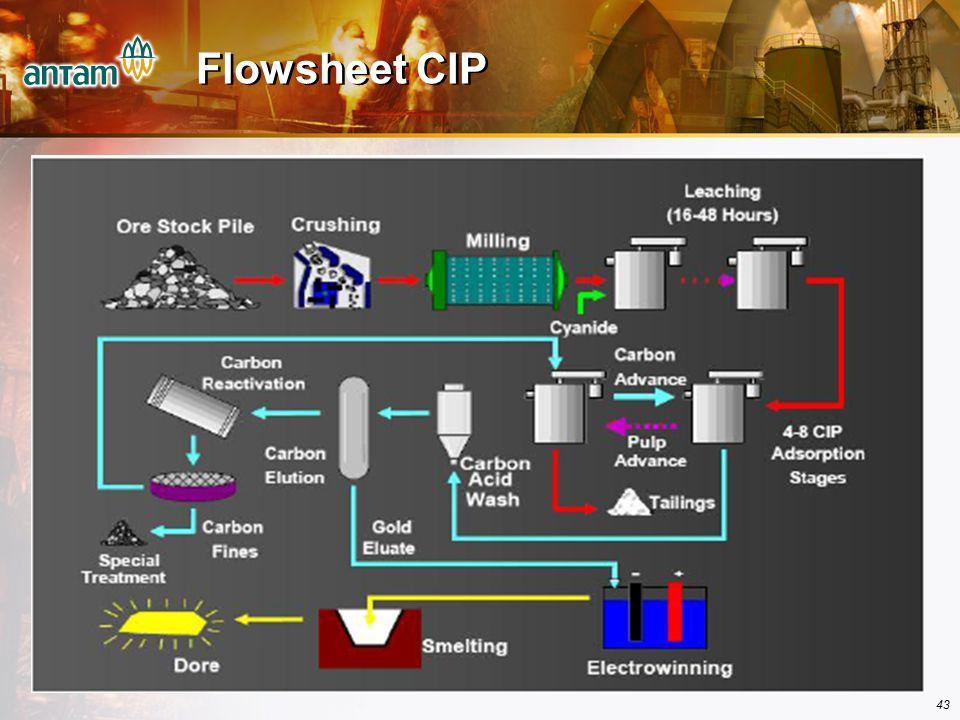 43 Flowsheet CIP