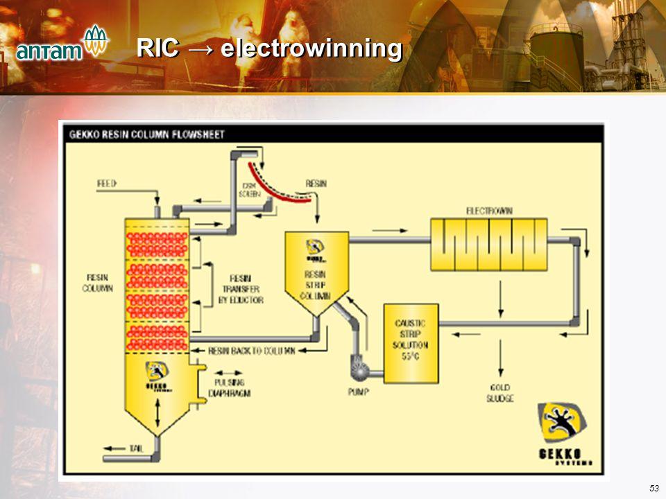 53 RIC → electrowinning