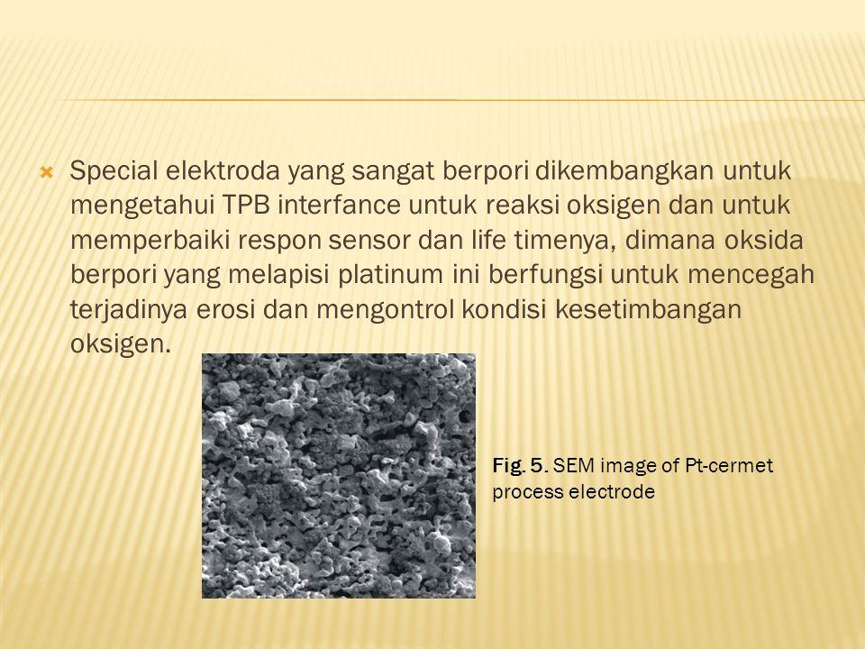  Special elektroda yang sangat berpori dikembangkan untuk mengetahui TPB interfance untuk reaksi oksigen dan untuk memperbaiki respon sensor dan life