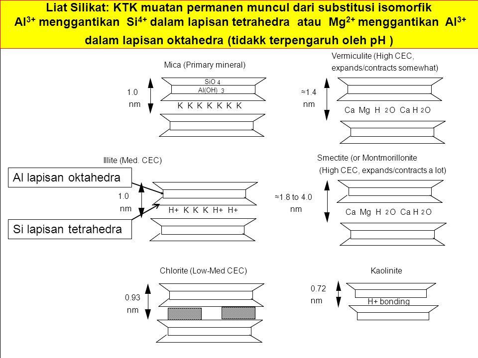 Kaolinite K K K K K K K 1.0 nm Mica (Primary mineral) H+ K K K H+ H+ 1.0 nm Illite (Med.