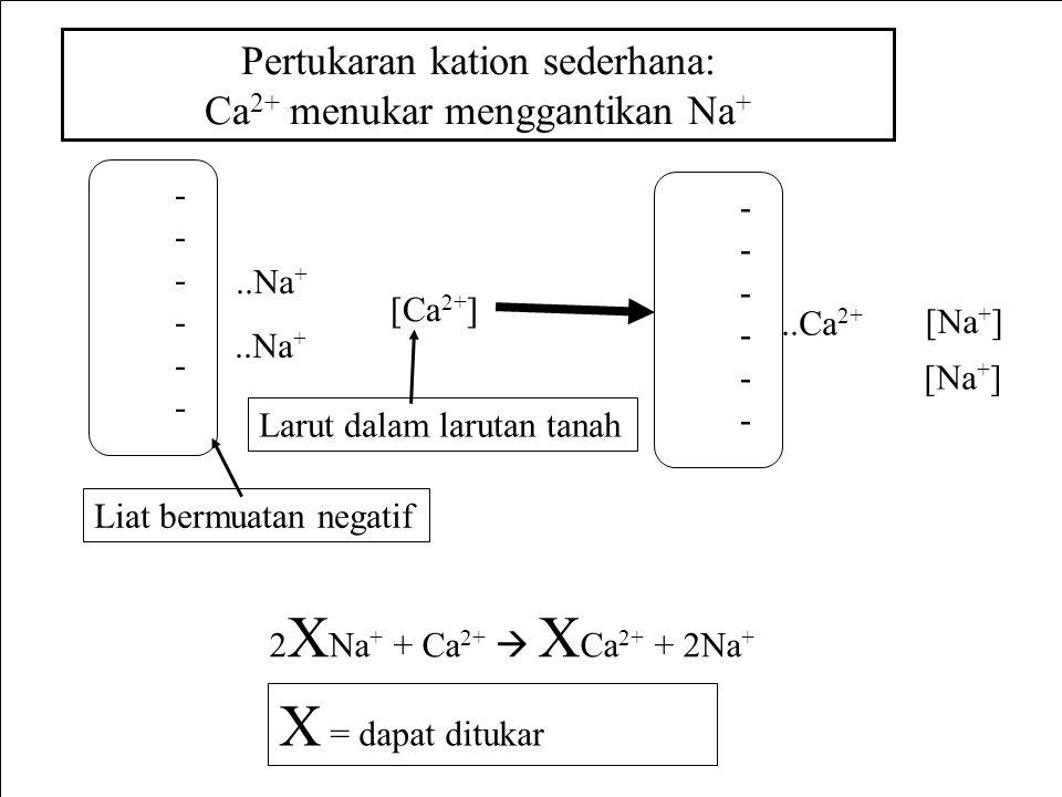 ------------..Na + Pertukaran kation sederhana: Ca 2+ menukar menggantikan Na + [Ca 2+ ] ------------..Ca 2+ [Na + ] 2 X Na + + Ca 2+  X Ca 2+ + 2Na + Liat bermuatan negatif Larut dalam larutan tanah X = dapat ditukar