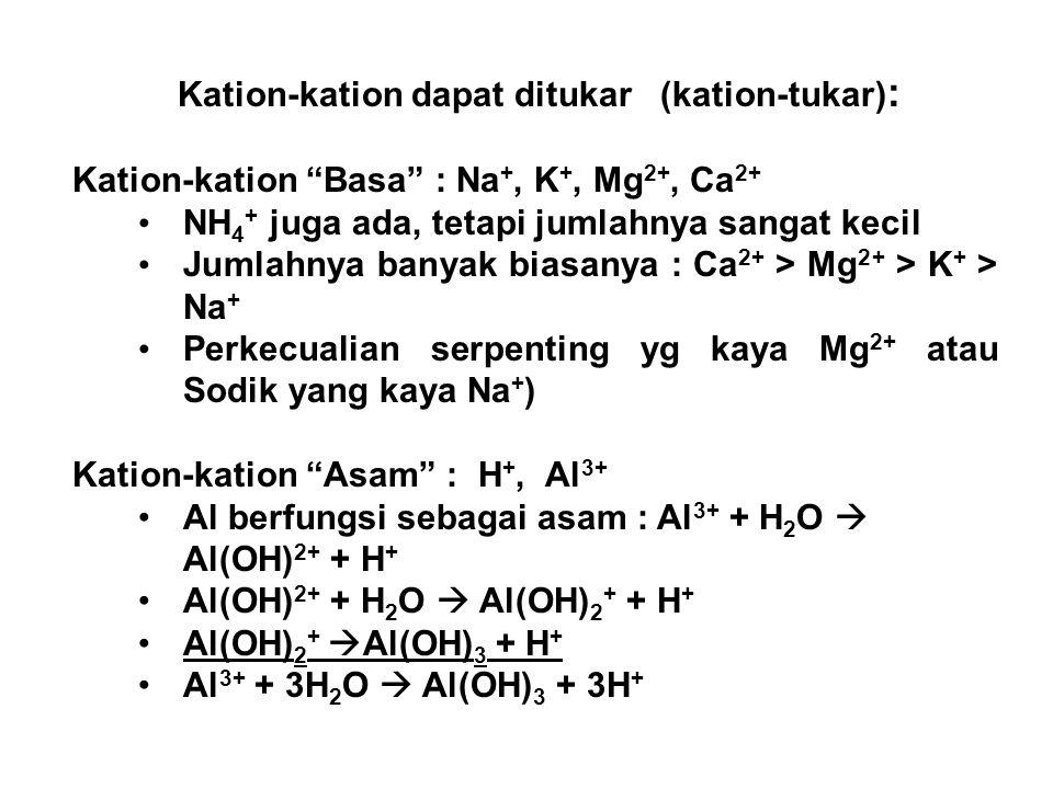 Kation-kation dapat ditukar (kation-tukar) : Kation-kation Basa : Na +, K +, Mg 2+, Ca 2+ NH 4 + juga ada, tetapi jumlahnya sangat kecil Jumlahnya banyak biasanya : Ca 2+ > Mg 2+ > K + > Na + Perkecualian serpenting yg kaya Mg 2+ atau Sodik yang kaya Na + ) Kation-kation Asam : H +, Al 3+ Al berfungsi sebagai asam : Al 3+ + H 2 O  Al(OH) 2+ + H + Al(OH) 2+ + H 2 O  Al(OH) 2 + + H + Al(OH) 2 +  Al(OH) 3 + H + Al 3+ + 3H 2 O  Al(OH) 3 + 3H +
