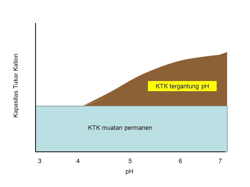 pH Kapasitas Tukar Kation KTK muatan permanen KTK tergantung pH