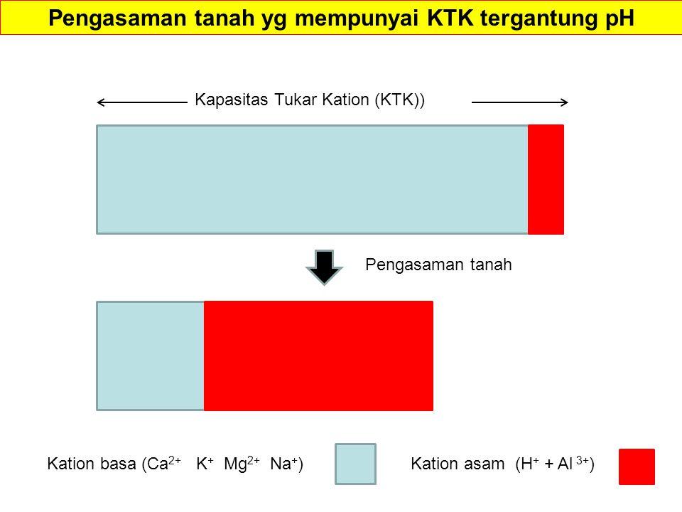 Kation basa (Ca 2+ K + Mg 2+ Na + )Kation asam (H + + Al 3+ ) Pengasaman tanah Pengasaman tanah yg mempunyai KTK tergantung pH Kapasitas Tukar Kation (KTK))