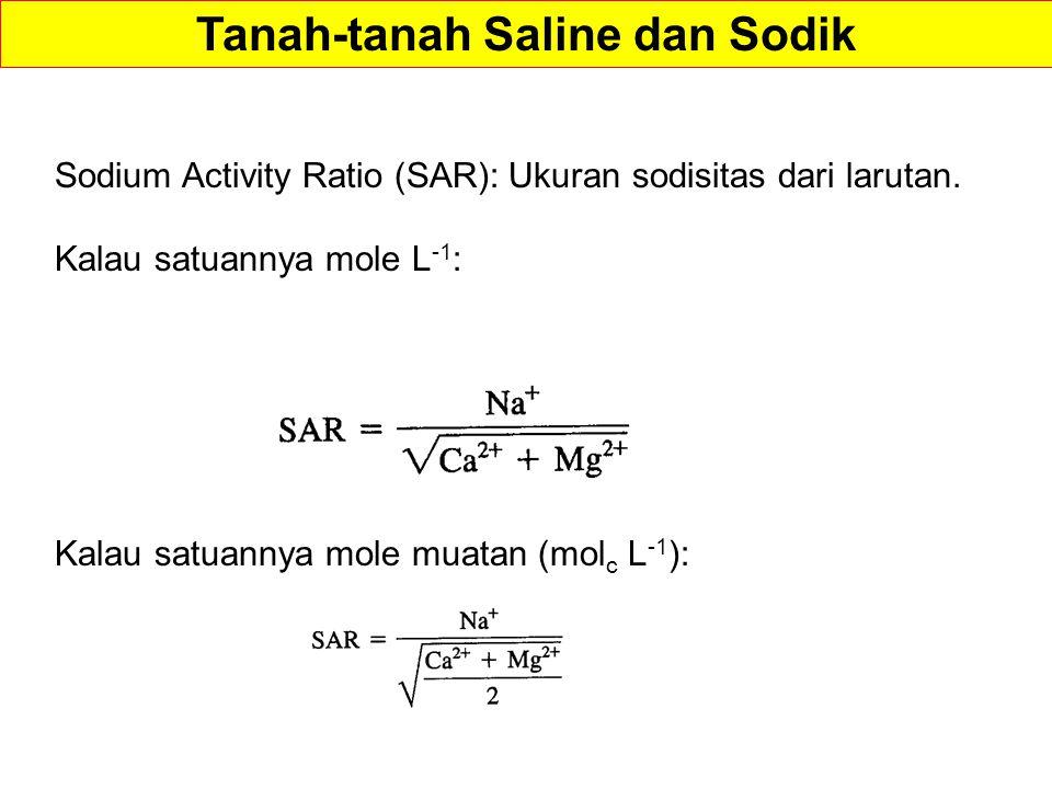 Sodium Activity Ratio (SAR): Ukuran sodisitas dari larutan.