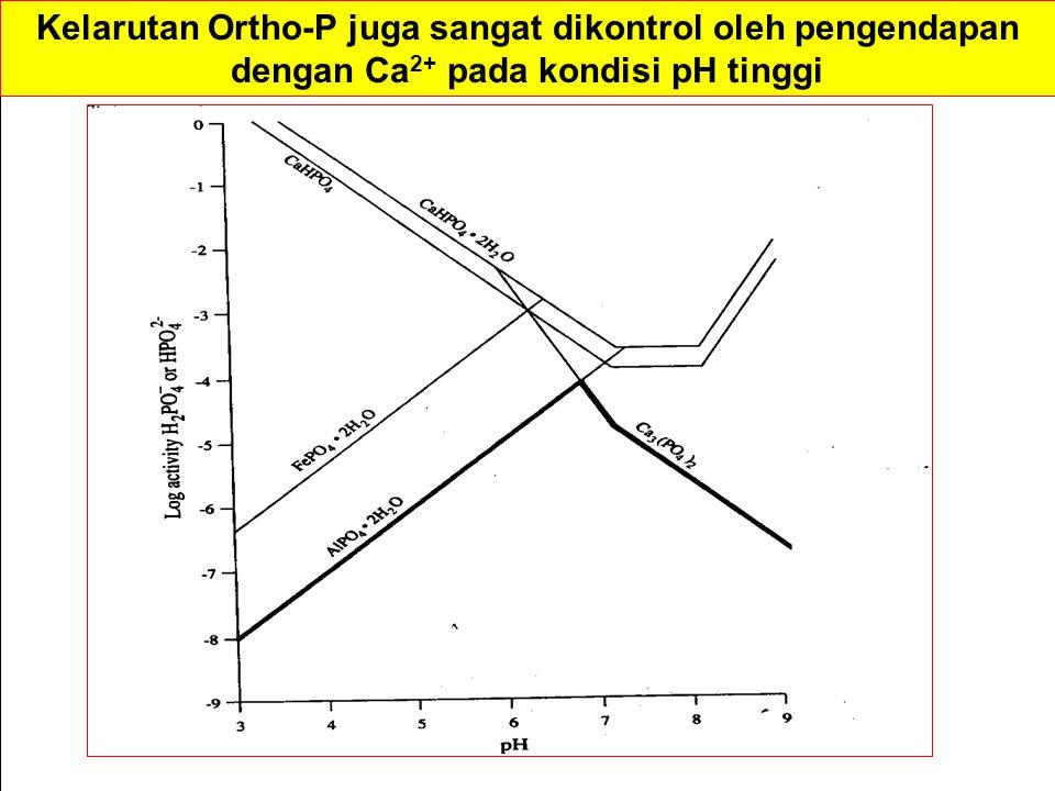 Kelarutan Ortho-P juga sangat dikontrol oleh pengendapan dengan Ca 2+ pada kondisi pH tinggi
