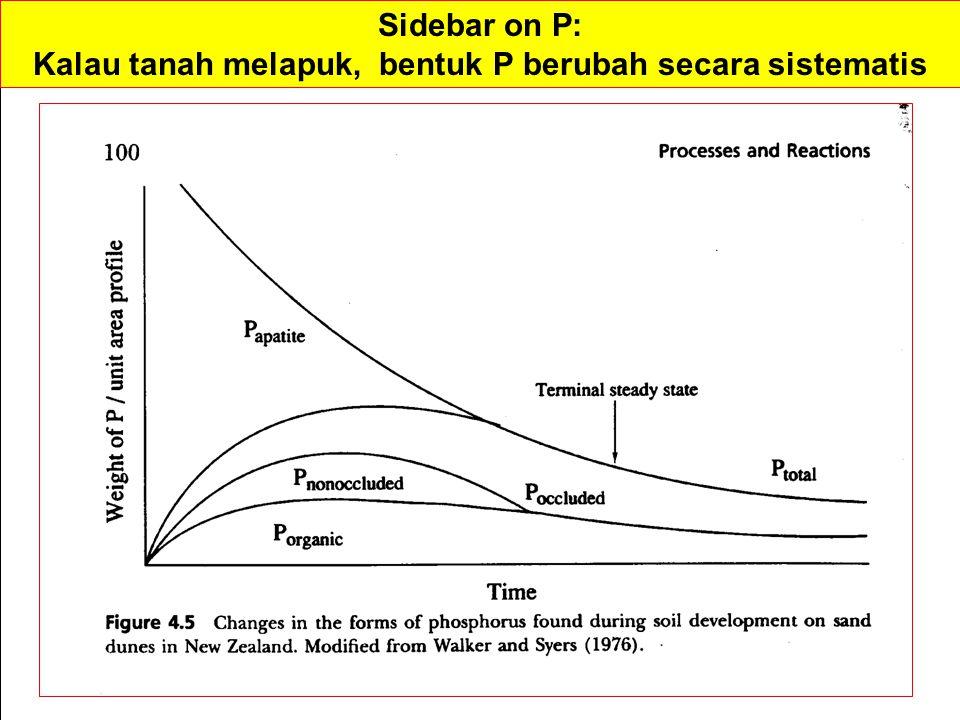 Sidebar on P: Kalau tanah melapuk, bentuk P berubah secara sistematis