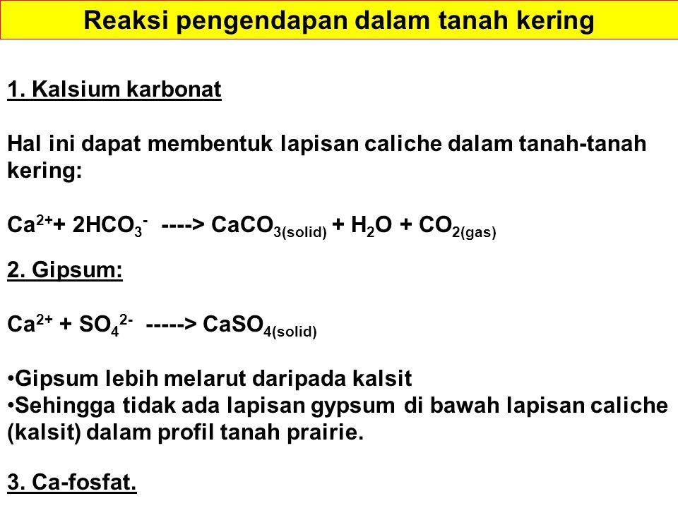 1. Kalsium karbonat Hal ini dapat membentuk lapisan caliche dalam tanah-tanah kering: Ca 2+ + 2HCO 3 - ----> CaCO 3(solid) + H 2 O + CO 2(gas) 2. Gips