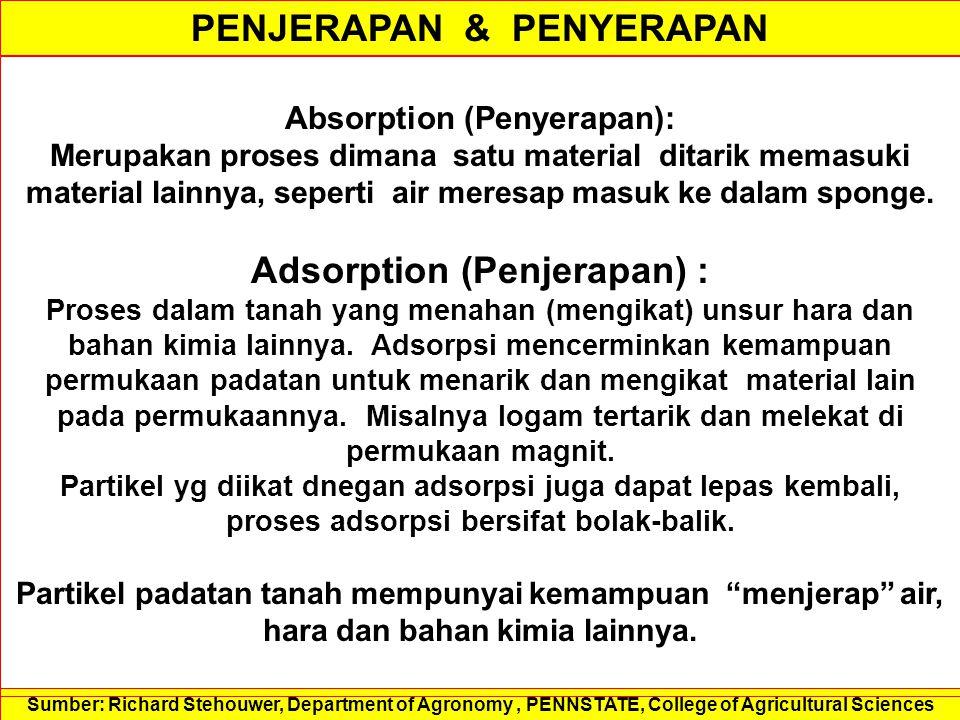PENJERAPAN & PENYERAPAN Absorption (Penyerapan): Merupakan proses dimana satu material ditarik memasuki material lainnya, seperti air meresap masuk ke dalam sponge.