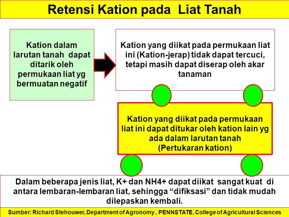 Retensi Kation pada Liat Tanah Dalam beberapa jenis liat, K+ dan NH4+ dapat diikat sangat kuat di antara lembaran-lembaran liat, sehingga difiksasi dan tidak mudah dilepaskan kembali.