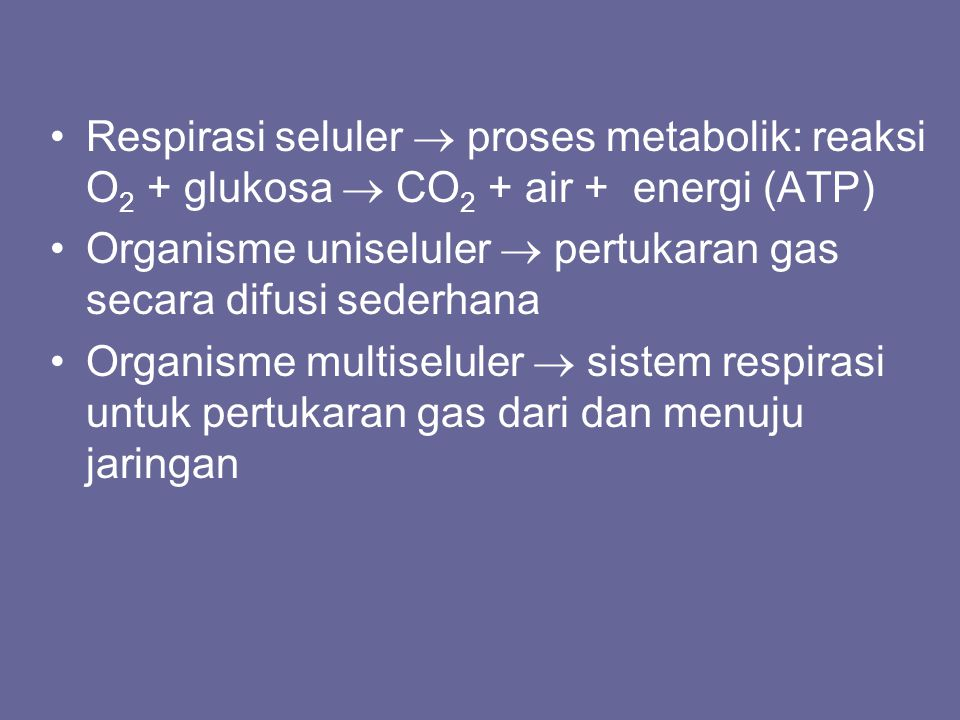 Respirasi seluler  proses metabolik: reaksi O 2 + glukosa  CO 2 + air + energi (ATP) Organisme uniseluler  pertukaran gas secara difusi sederhana O