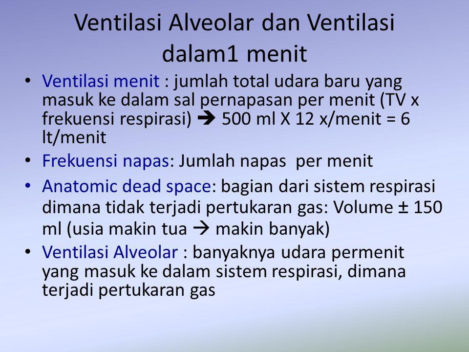 Ventilasi Alveolar dan Ventilasi dalam1 menit Ventilasi menit : jumlah total udara baru yang masuk ke dalam sal pernapasan per menit (TV x frekuensi r