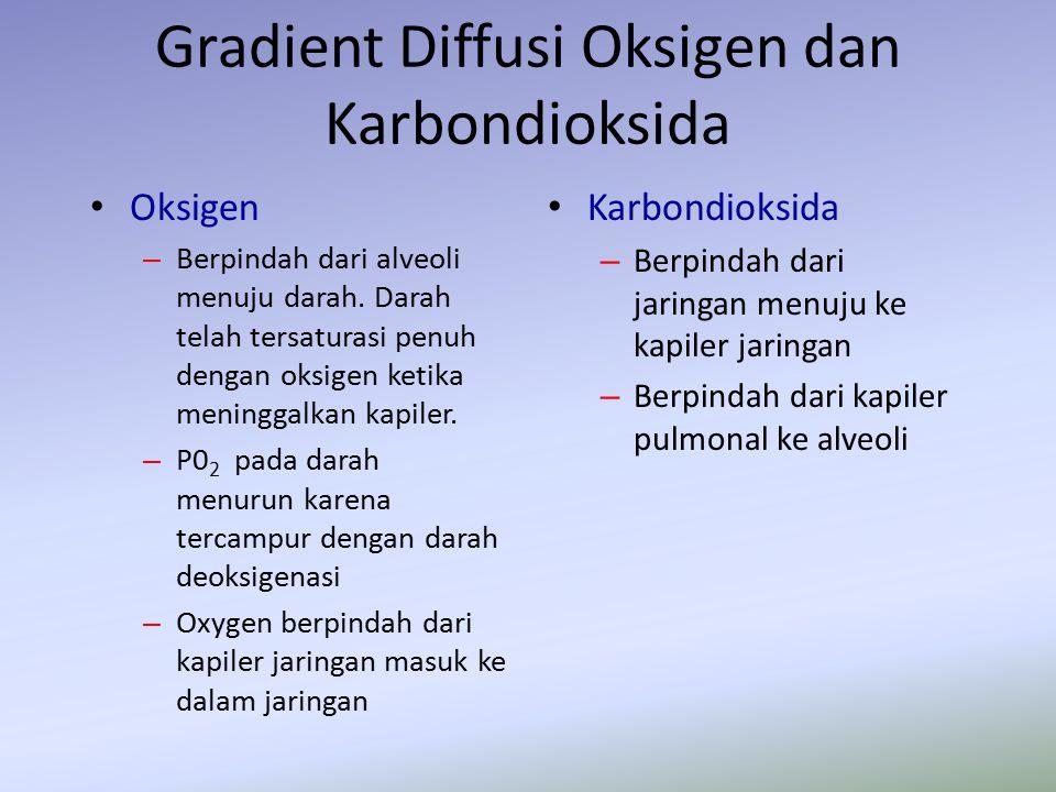 Gradient Diffusi Oksigen dan Karbondioksida Oksigen – Berpindah dari alveoli menuju darah. Darah telah tersaturasi penuh dengan oksigen ketika meningg