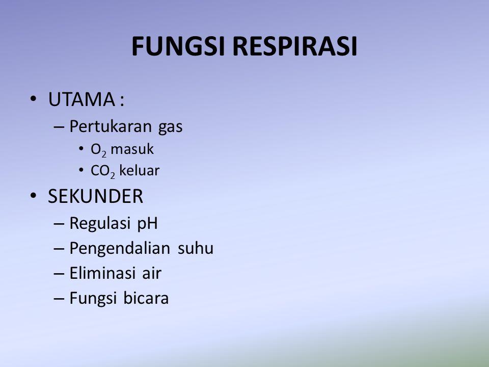 FUNGSI RESPIRASI UTAMA : – Pertukaran gas O 2 masuk CO 2 keluar SEKUNDER – Regulasi pH – Pengendalian suhu – Eliminasi air – Fungsi bicara