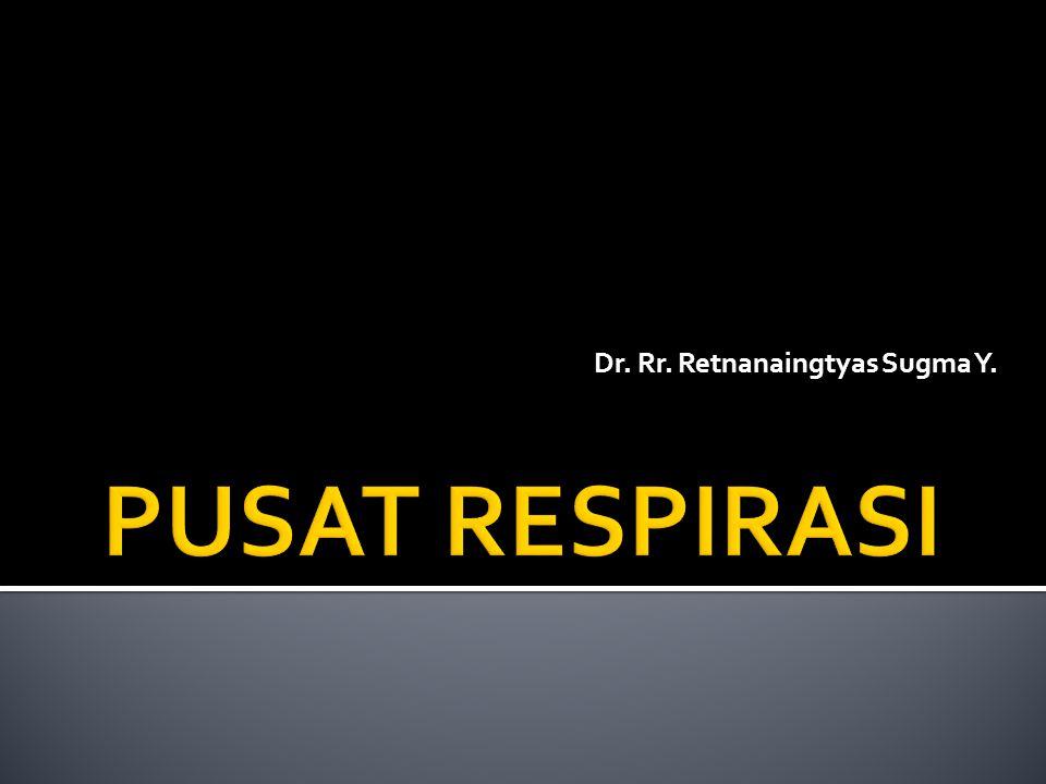  Pusat respirasi merupakan sekelompok neuron yang tersebar luas dan terletak bilateral di dalam substansia retikularis medula oblongata dan pons.