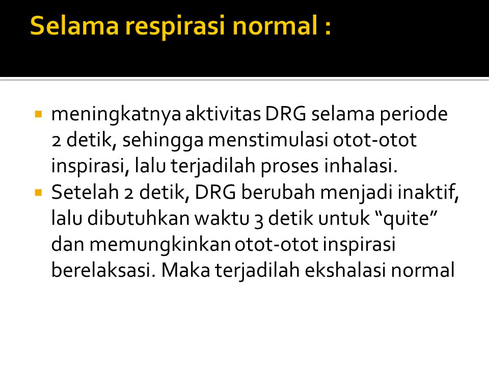 meningkatnya aktivitas DRG selama periode 2 detik, sehingga menstimulasi otot-otot inspirasi, lalu terjadilah proses inhalasi.  Setelah 2 detik, DR
