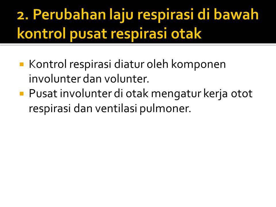  Kontrol respirasi diatur oleh komponen involunter dan volunter.