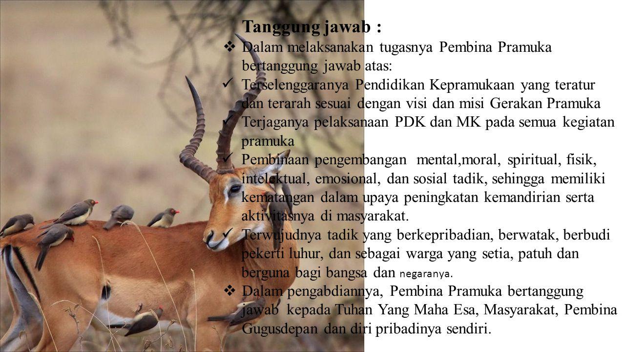 Tugas : MM emberikan pembinaan agar tadik menjadi: m anusia berkepribadian, berwatak, dan berbudi pekerti luhur, w arga negara Rebuplik Indonesia yang berjiwa Pancasila, setia dan patuh kepada NKRI serta menjadi anggota masyarakat yang baik dan berguna.