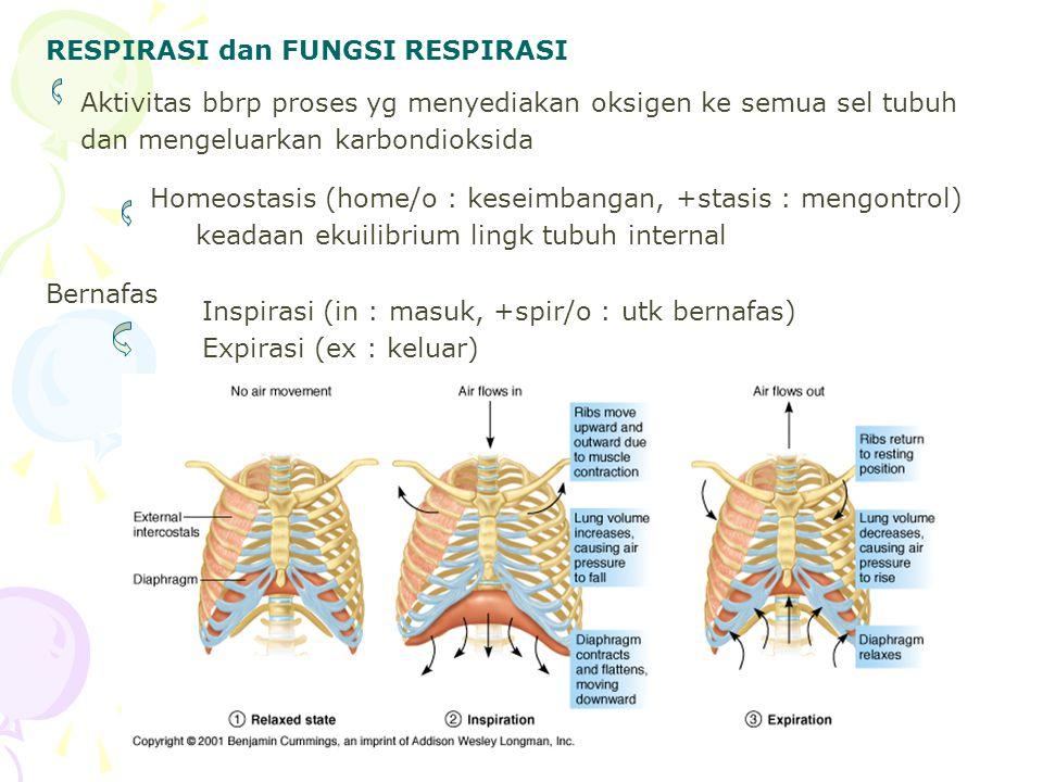 RESPIRASI dan FUNGSI RESPIRASI Aktivitas bbrp proses yg menyediakan oksigen ke semua sel tubuh dan mengeluarkan karbondioksida Homeostasis (home/o : k