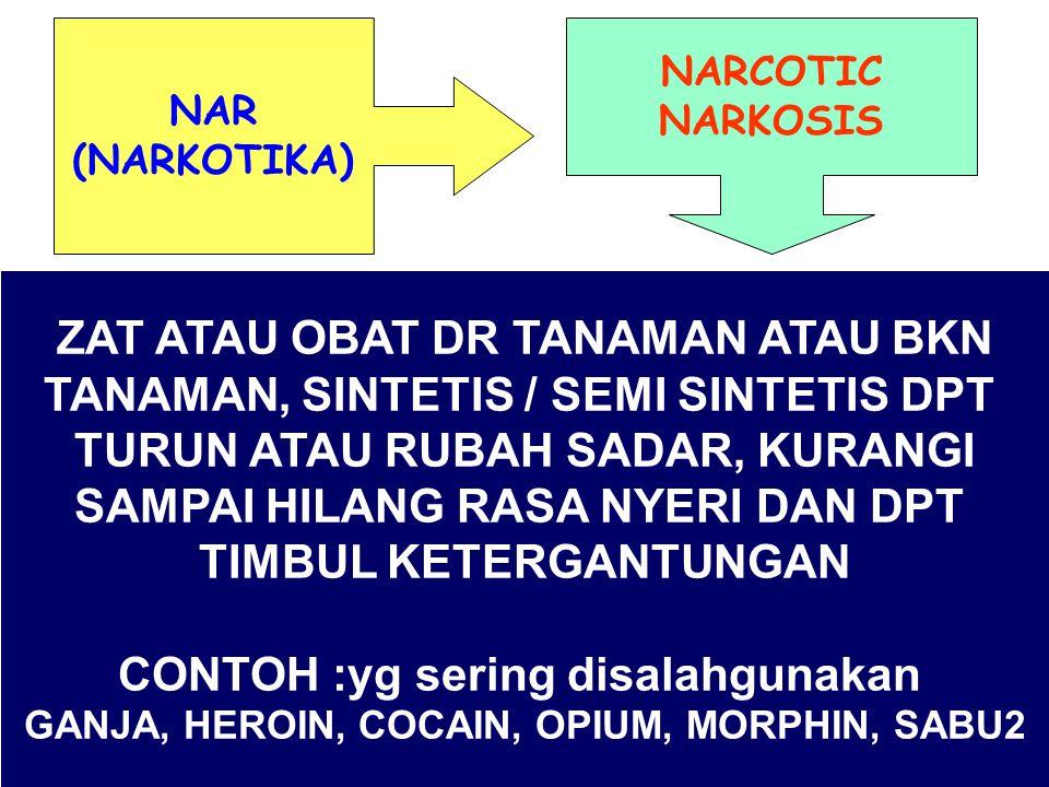 NARCOTIC NARKOSIS NAR (NARKOTIKA) ZAT ATAU OBAT DR TANAMAN ATAU BKN TANAMAN, SINTETIS / SEMI SINTETIS DPT TURUN ATAU RUBAH SADAR, KURANGI SAMPAI HILANG RASA NYERI DAN DPT TIMBUL KETERGANTUNGAN CONTOH :yg sering disalahgunakan GANJA, HEROIN, COCAIN, OPIUM, MORPHIN, SABU2