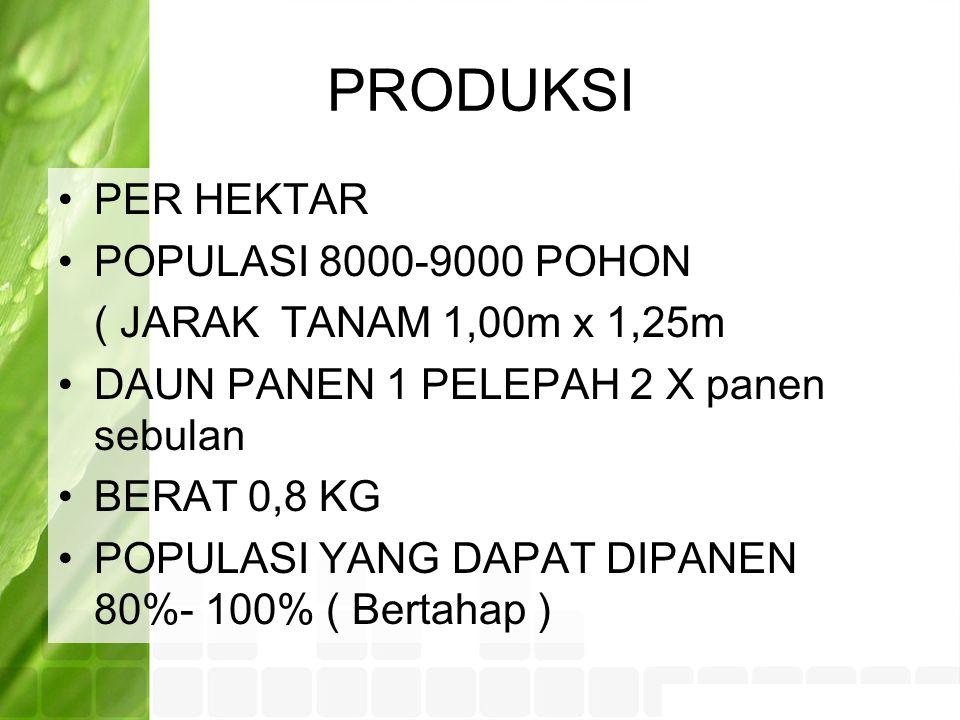 PRODUKSI PER HEKTAR POPULASI 8000-9000 POHON ( JARAK TANAM 1,00m x 1,25m DAUN PANEN 1 PELEPAH 2 X panen sebulan BERAT 0,8 KG POPULASI YANG DAPAT DIPANEN 80%- 100% ( Bertahap )