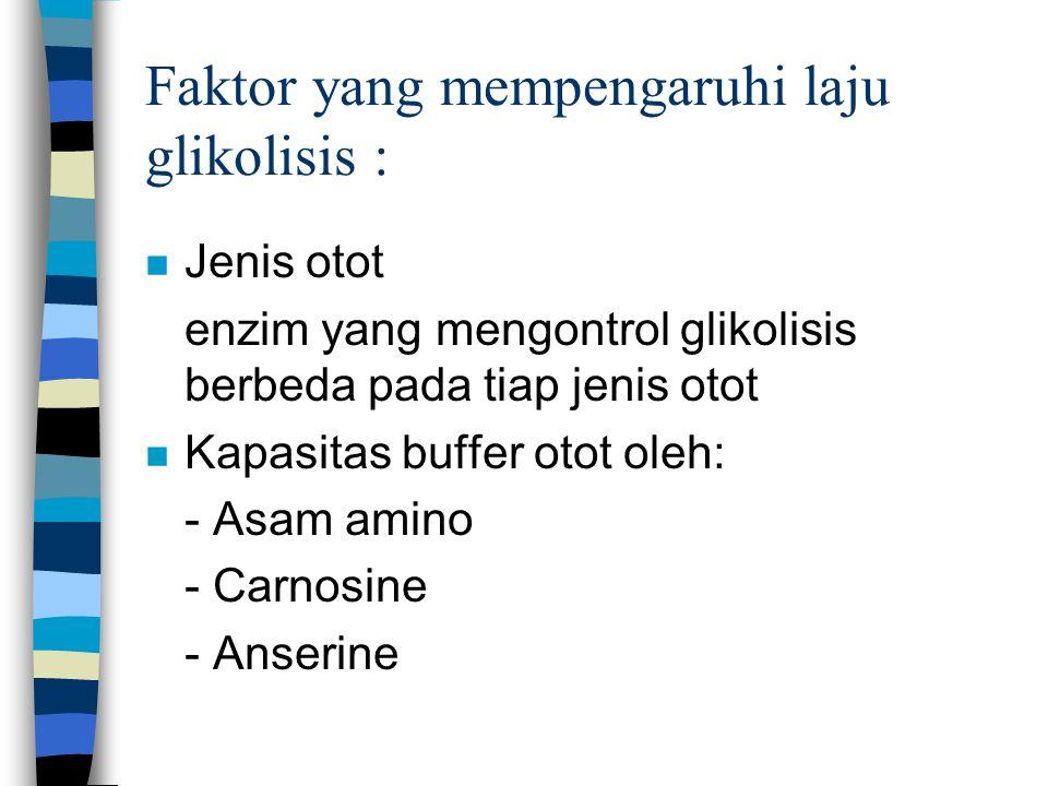 Faktor yang mempengaruhi laju glikolisis : n Jenis otot enzim yang mengontrol glikolisis berbeda pada tiap jenis otot n Kapasitas buffer otot oleh: - Asam amino - Carnosine - Anserine