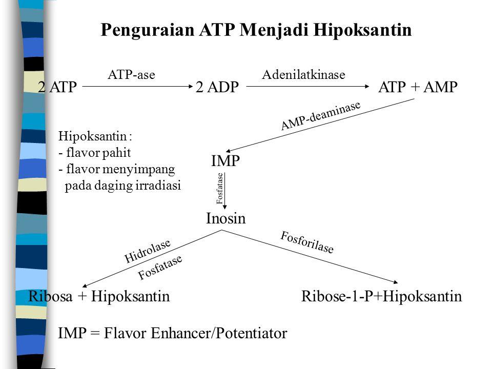 Penguraian ATP Menjadi Hipoksantin 2 ATP2 ADPATP + AMP ATP-aseAdenilatkinase IMP Inosin Ribosa + HipoksantinRibose-1-P+Hipoksantin AMP-deaminase Fosforilase Fosfatase Hidrolase Fosfatase IMP = Flavor Enhancer/Potentiator Hipoksantin : - flavor pahit - flavor menyimpang pada daging irradiasi