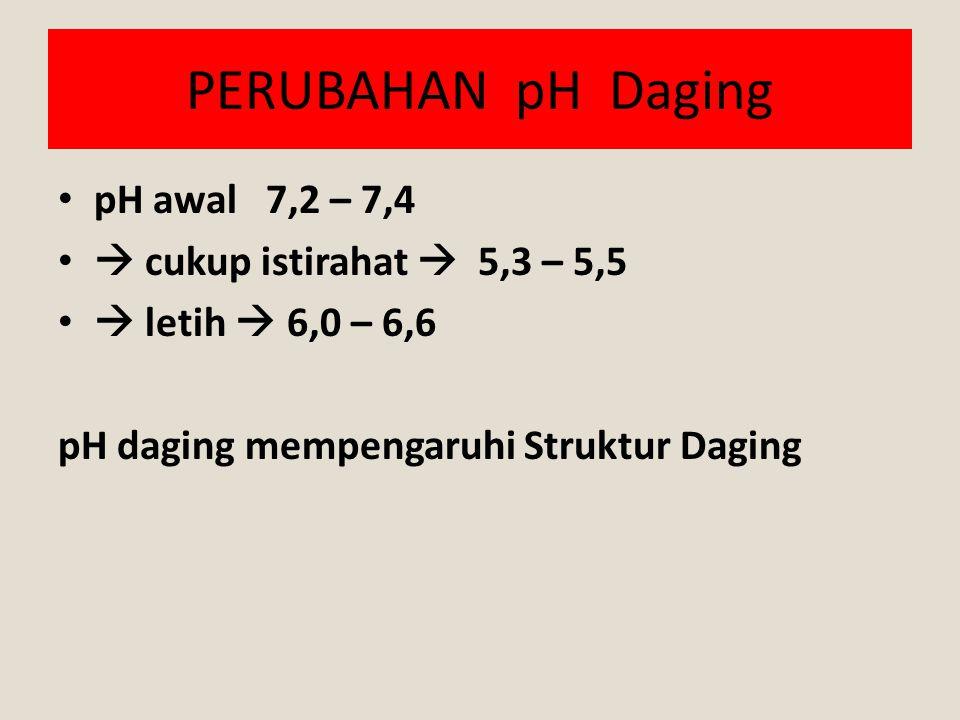 PERUBAHAN pH Daging pH awal 7,2 – 7,4  cukup istirahat  5,3 – 5,5  letih  6,0 – 6,6 pH daging mempengaruhi Struktur Daging