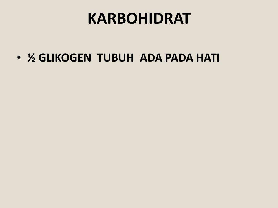 KARBOHIDRAT ½ GLIKOGEN TUBUH ADA PADA HATI
