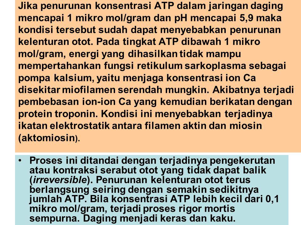 Jika penurunan konsentrasi ATP dalam jaringan daging mencapai 1 mikro mol/gram dan pH mencapai 5,9 maka kondisi tersebut sudah dapat menyebabkan penur