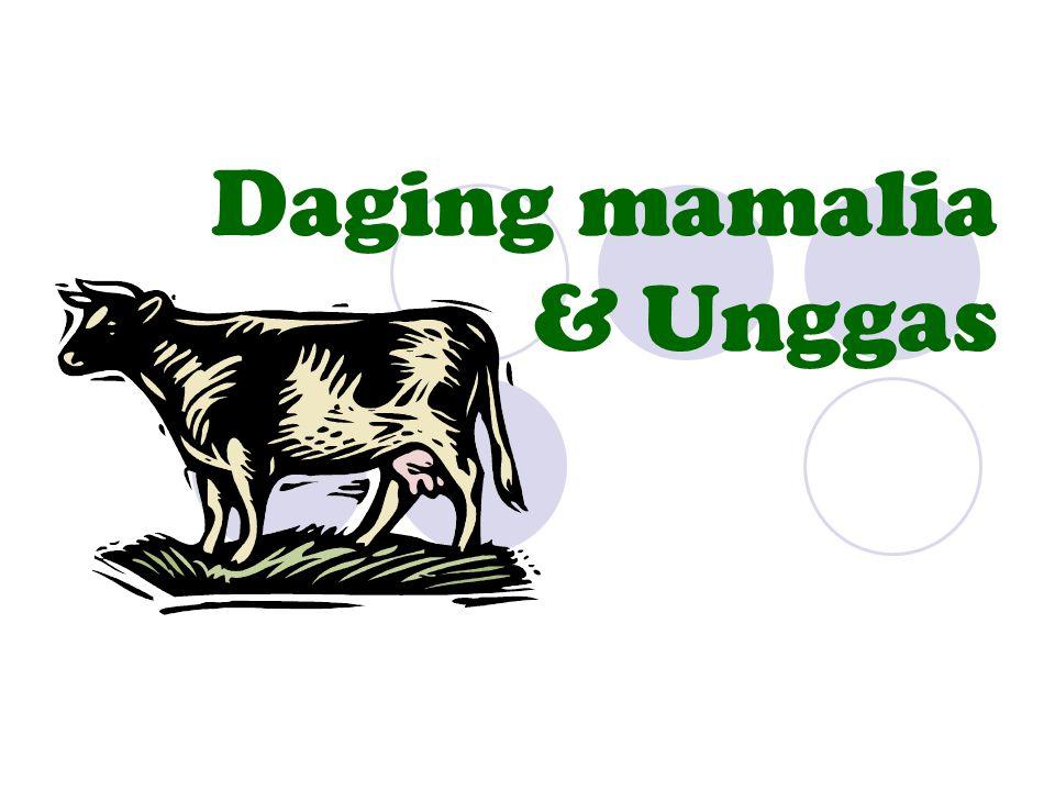 Daging mamalia & Unggas