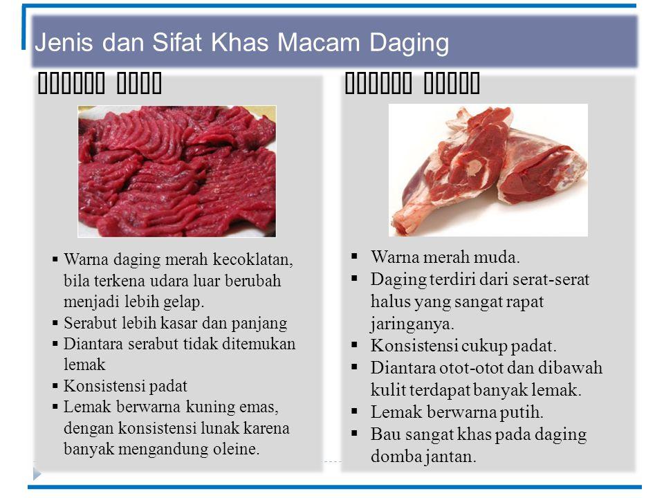 Jenis dan Sifat Khas Macam Daging Daging KudaDaging Domba  Warna daging merah kecoklatan, bila terkena udara luar berubah menjadi lebih gelap.