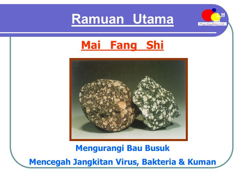 AVAI L T M EE-MDN Ramuan Utama Mai Fang Shi Mengurangi Bau Busuk Mencegah Jangkitan Virus, Bakteria & Kuman