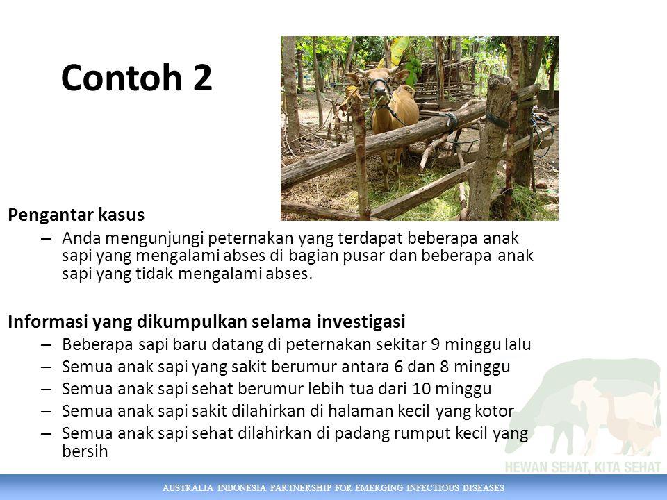 AUSTRALIA INDONESIA PARTNERSHIP FOR EMERGING INFECTIOUS DISEASES Contoh 2 Pengantar kasus – Anda mengunjungi peternakan yang terdapat beberapa anak sa