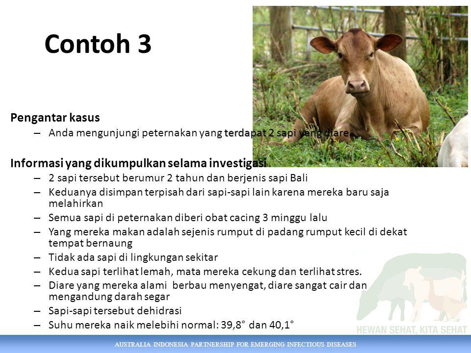 AUSTRALIA INDONESIA PARTNERSHIP FOR EMERGING INFECTIOUS DISEASES Contoh 3 Pengantar kasus terdapat 2 sapi yang diare – Anda mengunjungi peternakan yan