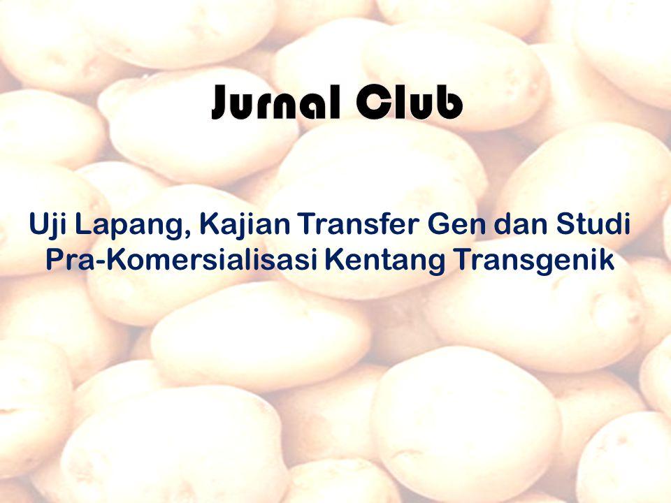 Uji Lapang, Kajian Transfer Gen dan Studi Pra-Komersialisasi Kentang Transgenik