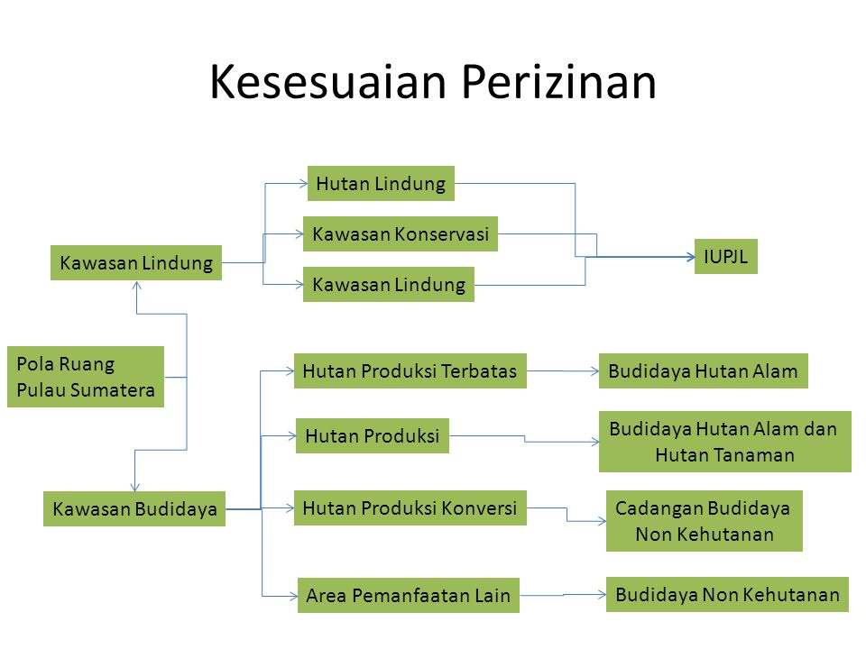 Kesesuaian Perizinan Hutan Lindung IUPJL Area Pemanfaatan Lain Hutan Produksi Hutan Produksi Konversi Hutan Produksi Terbatas Kawasan Konservasi Kawas