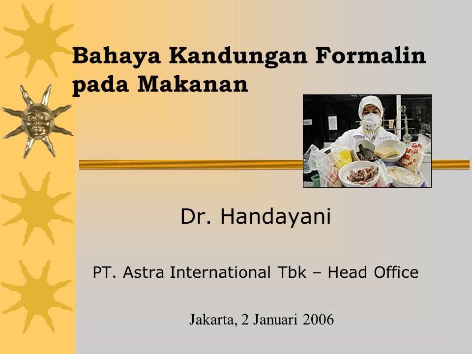 Bahaya Kandungan Formalin pada Makanan Dr.Handayani PT.