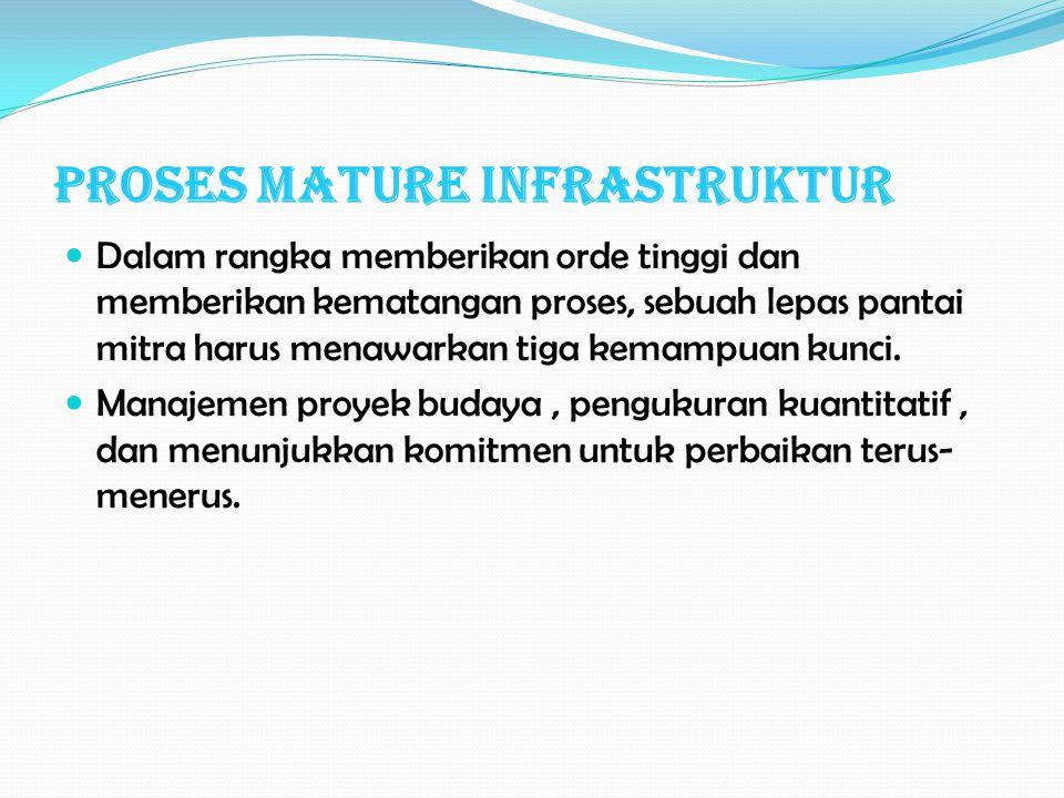 Proses Mature Infrastruktur Dalam rangka memberikan orde tinggi dan memberikan kematangan proses, sebuah lepas pantai mitra harus menawarkan tiga kemampuan kunci.