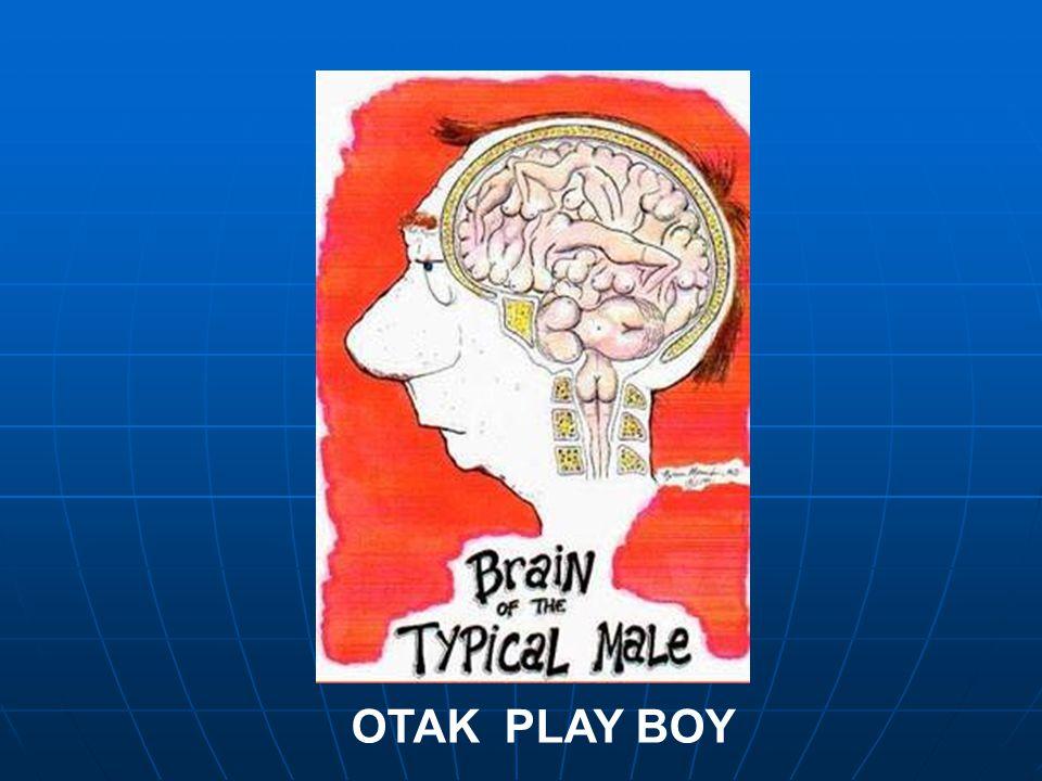 OTAK PLAY BOY