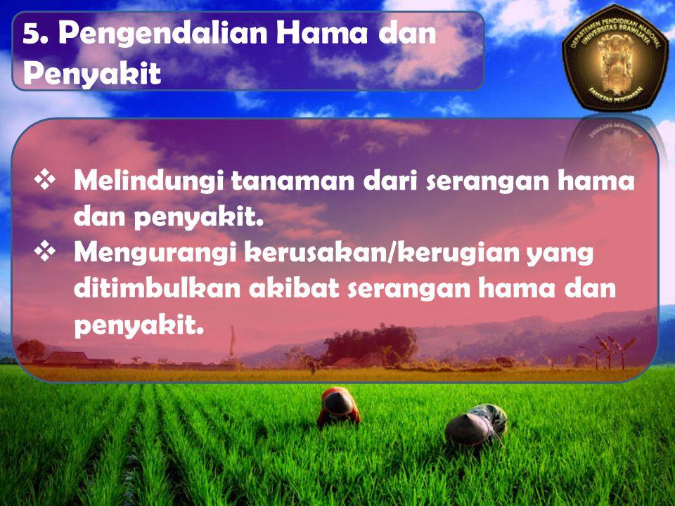 5. Pengendalian Hama dan Penyakit  Melindungi tanaman dari serangan hama dan penyakit.